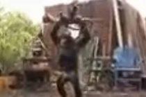Kad majmunu daš oružje!
