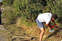 """FOTO: Članovi Biciklističkog kluba """"Primošten"""" u radnim akcijama"""