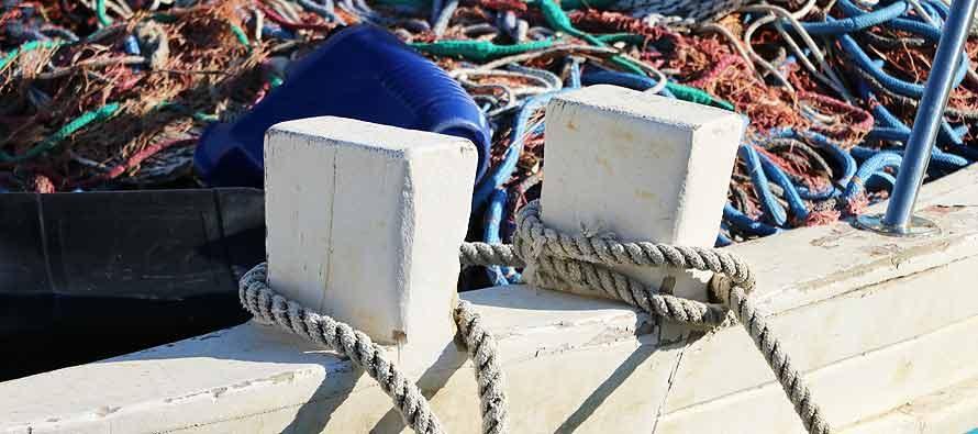 Od 1. siječnja nema više malog ribolova!