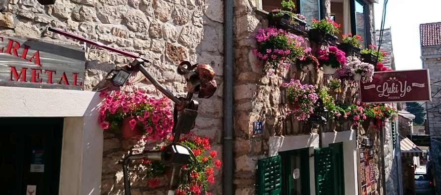 OKITIMO PRIMOŠTEN: Primoštenske kale okićene raznobojnim cvijećem