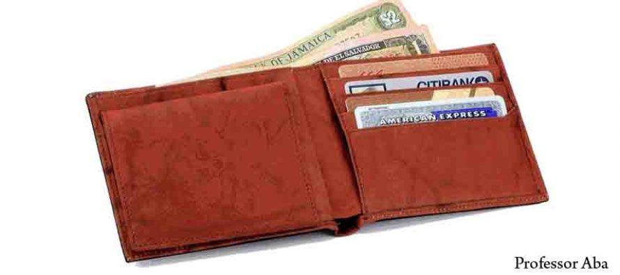 Izgubljen novčanik sa dokumentima i novcima na području poluotoka Raduča