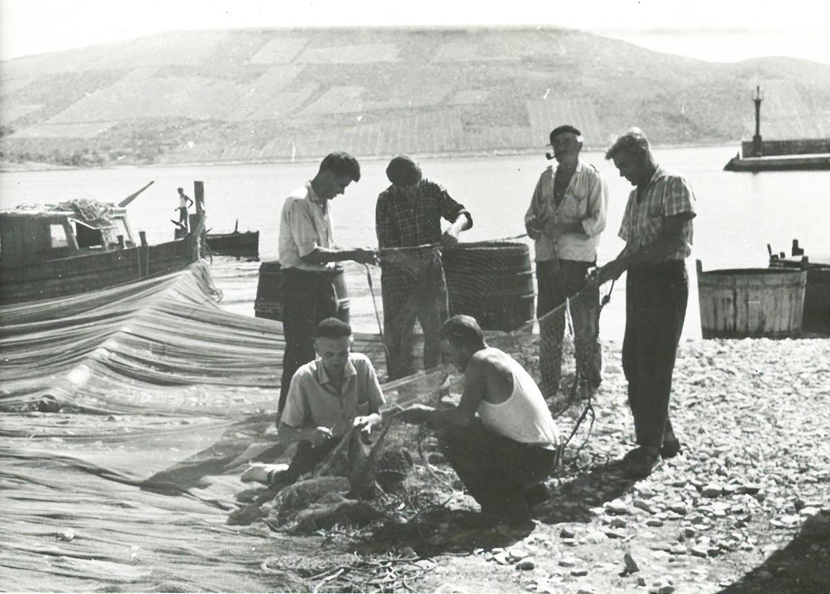 stari ribari