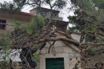 Jaki udar bure oborio veliki bor na kapelicu Gospe od Porta
