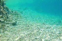 Smokvica – nevjerojatno kristalno čisto more